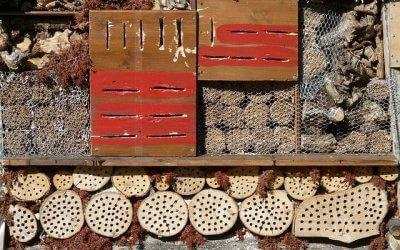 Atelier Nature proposé par l'Association L'Envolée